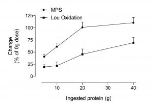 Sättigung der Proteinsynthese. Mehr hilft nicht mehr.