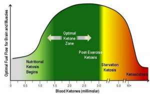 Bereiche der optimalen ketogenen Blutwerte (Jeffrey Volek, The Art and Science of Low Carbohydrate Living.)